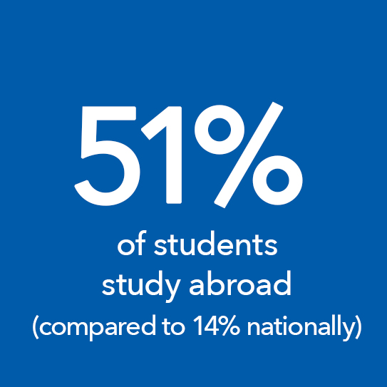 51% of students study abroad