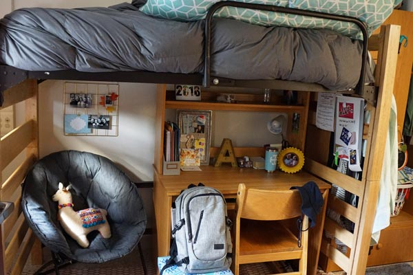 Regina Hall Bunk at Saint Mary's College