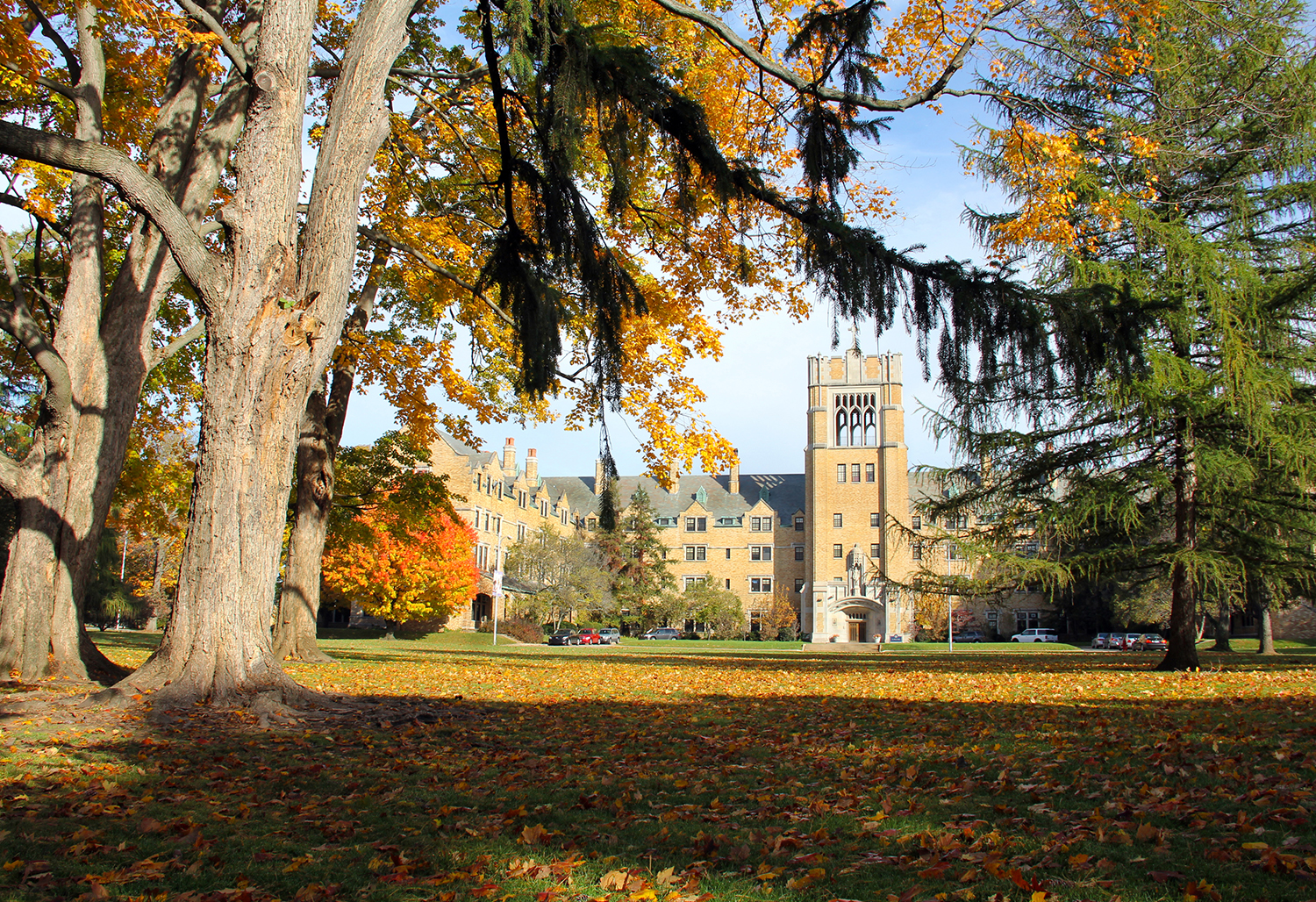 Fall on campus, Le Mans Hall