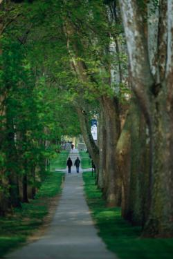 Take a stroll down The Avenue on a campus tour this summer during Indiana Private Schools Week, July 21-25, or any time. Call Admission at (800) 551-7621 for more information.