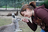 Chevonn Fant feeding a wallaby