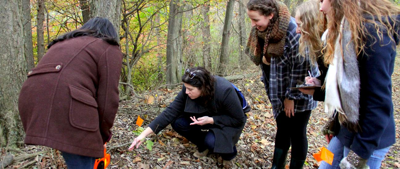 Students and professor examining plants
