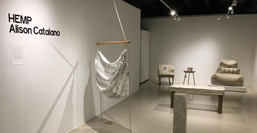 Student Showcase – Alison Catalano